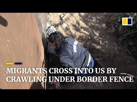 AM Tampa Bay - Caravan Migrants Seen Stuffing Babies Under Border Wall