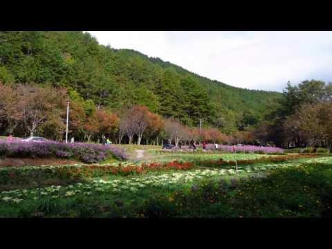 音樂磁場- 冬天過了是春天- 武陵 ,Taiwan