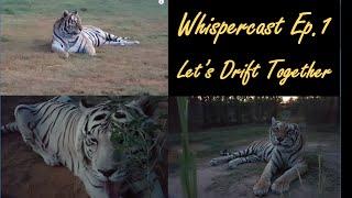 """Whispercast (ASMR) Ep. 1 - """"Let"""