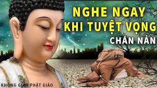 Nếu 1 Ngày Bạn Bất Lực Tuyệt Vọng Trong Cuộc Sống - Hãy Lắng Nghe Lời Phật Dạy Này để Tìm Lối Thoát