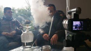 MG CHICHA - SOCIAL SMOKE PINK LEMONADE - PREDATOR