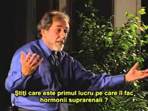 Bruce Lipton - Natură, educație și puterea iubirii - RO