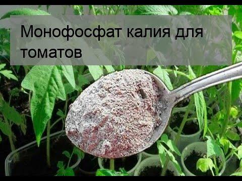 Вопрос: Монокалийфосфат, как применять для внекорневой подкормки томатов?