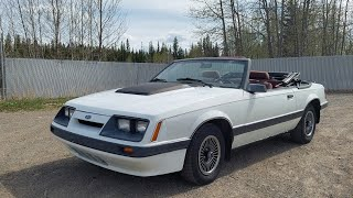 I'm potentially getting rİd of my 1986 Mustang? Plus a look at what I'm potentially buying.