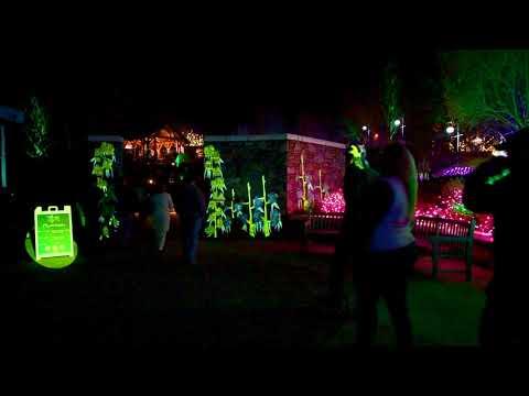 Highland Mediaworksu0027 3D Projection Mapping   NC Arboretum   Winter Lights    Plantasia   Asheville NC