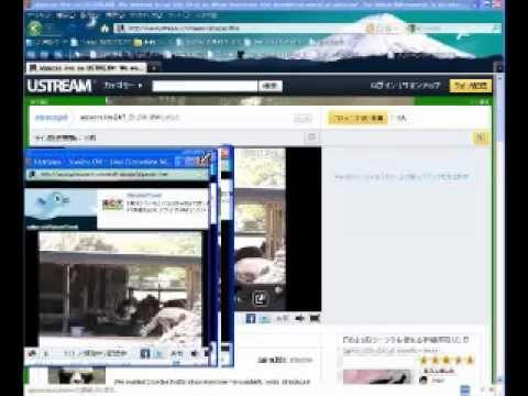 Ustreamの使い方