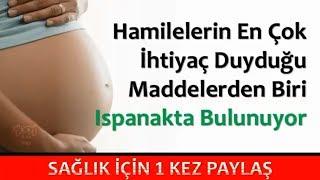 Hamilelerin En Çok İhtiyaç Duyduğu Maddelerden Biri Ispanakta Bulunuyor