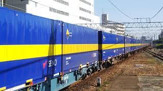 2018/11/10 貨物列車2059レEF66-27号機(吹)カンガルーライナーSS60牽引!!