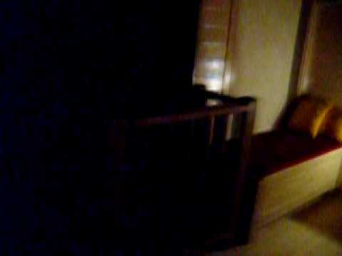 Honeymoon - guest house Amirim