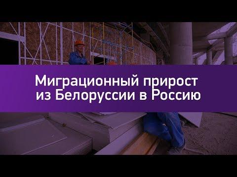 Миграционный прирост из Белоруссии в Россию