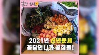 워킹맘 꽃담언니의 꽃집브이로그 /꽃점 신년운세/컨디셔닝