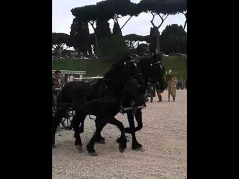 ROME: In The Eyes Of A Stranger 12G