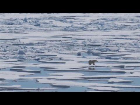 euronews (in Italiano): Giornata della Terra: le minacce al pianeta