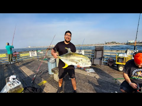 What An Incredible Morning, Crevalle Jack Run - Galveston Fishing