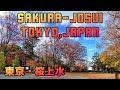 【駅前散策・116】京王線・桜上水 の動画、YouTube動画。