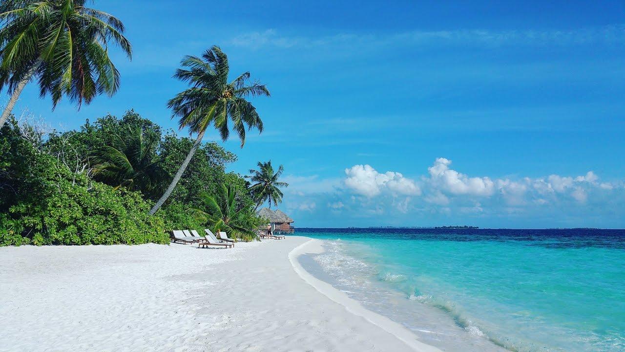 Bandos Maldives Mannequin Challenge