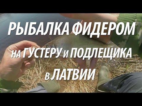 Рыбалка на фидер в Литве from YouTube · Duration:  18 minutes 23 seconds