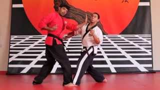 Street Fighting Using Traditional Martial Arts: Part 2 Ussd