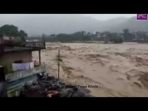 Flood in Butwal Tinau  River collapsed the  bridge# Flood disasters Footage  in Butwal ,Ridi,Kaski.
