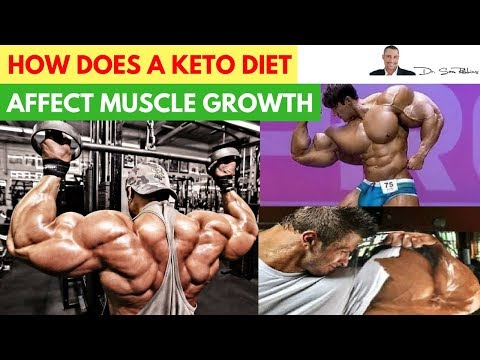 🍽️-how-does-a-ketogenic-diet-affect-muscle-growth---by-dr-sam-robbins
