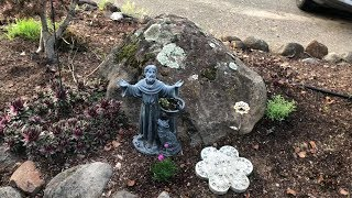 Front Yard and St. Francis Statue for My Wife
