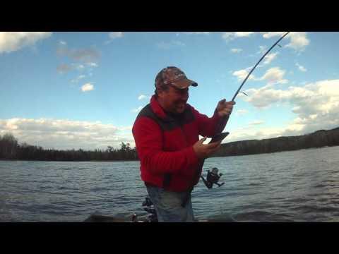 Striped bass miramichi fishing 2017