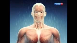 Шок! Душ Шарко для похудения дома- на ТК Россия