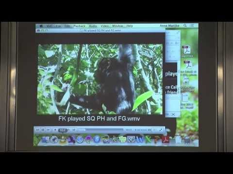 Dr Anne Schel - Vocal Communication in chimpanzees: links to human language?