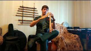 Как играть на поперечной флейте. Основы.