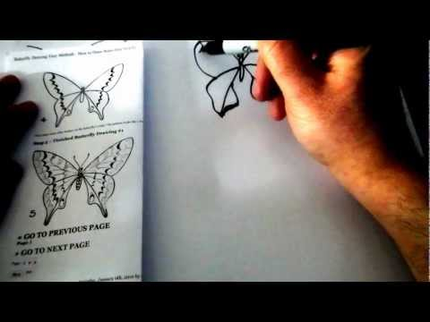 Learn To Draw a butterfly With Josh (Butterfly 1)