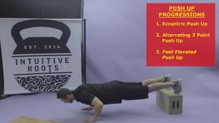 Intuitive Roots - Discipline Burn - Skills Library - Push Up