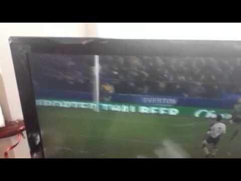 tim howard goal 2012