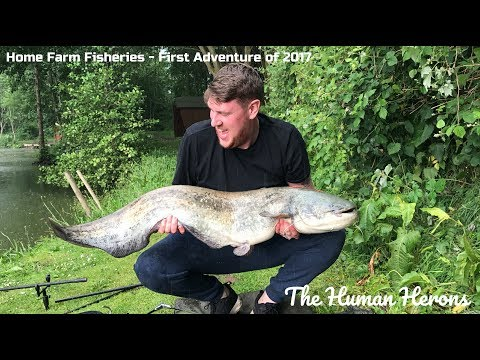 Home Farm Fisheries - The First Adventure For 2017