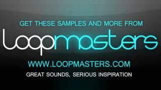 Loopmasters present Biggabush Afro Electro Dub - Electro Dub Samples