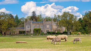 Visiting Animals in Cotswold Wildlife Park and Gardens in Burford | England | Gaslamp Funworks Track