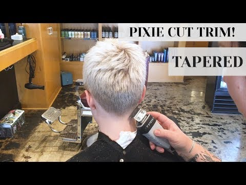 Clippers & Tapered Fade Haircut