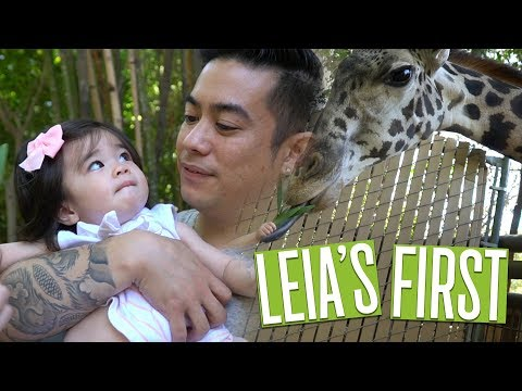 Leia Feeds Giraffe!! | Baby's First Zoo