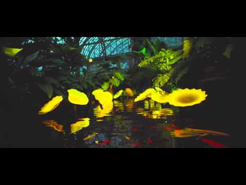 4K: BIOMES at the Garfield Park Conservatory