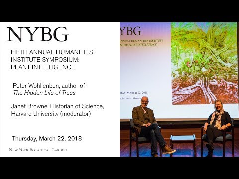 Fifth Annual Humanities Institute Symposium: Plant Intelligence
