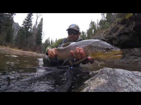 Los Pinos River: Giant Giant Brown