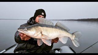 КРУПНЫЕ СУДАКИ НА КАЖДЫЙ ЗАБРОС Жор МЕЧТЫ на Оби поздней осенью Рыбалка джиг
