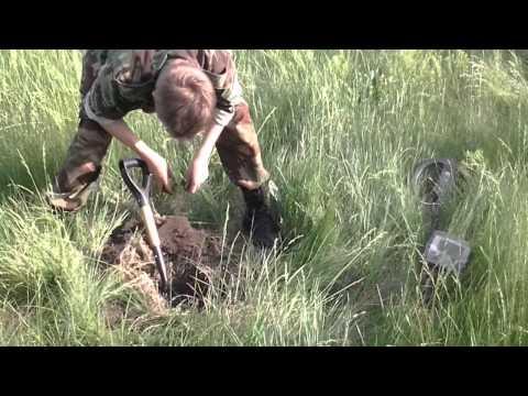 знакомства украина сумская область с краснополье