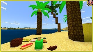 Does Minecraft Need a Beach Biome Update?