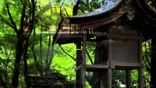 上賀茂神社  Kamigamo jinja Shinto Shrine Kyoto Japan Full HD