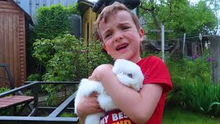 Stories for children-Makar and Ksenia help animals boo boo version