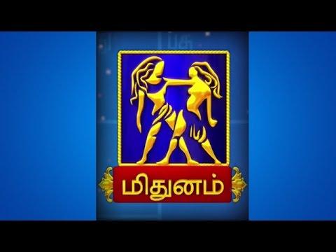 Rasi Palan 2017 - Mithunam