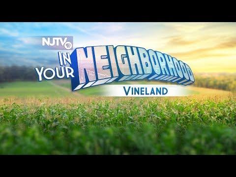 In Your Neighborhood Special: Vineland