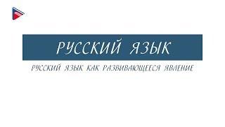 7 класс - Русский язык - Русский язык как развивающееся явление