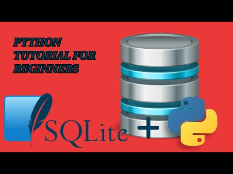 Python and SQLite Tutorial For Beginners - Make A Database In No Time - 2020