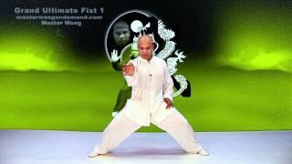 Tai Chi combat tai chi chuan fight style use tai chi - lesson 12